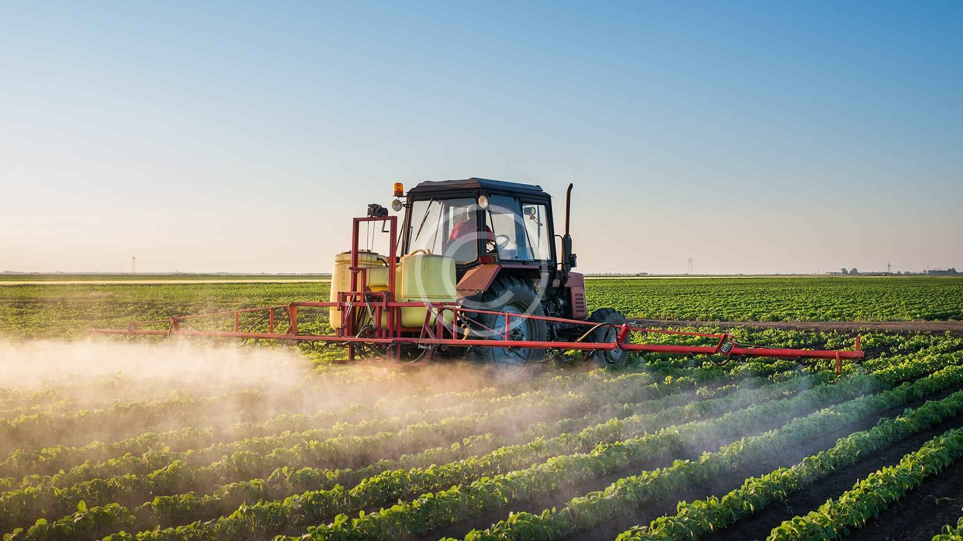 Eco Agriculture: Living without Pesticides